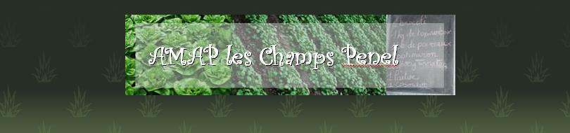 Champs Penel